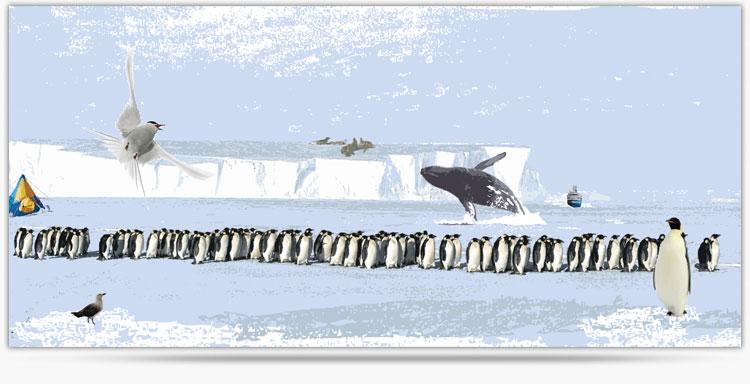 Antarktis_157cm_x_73cm